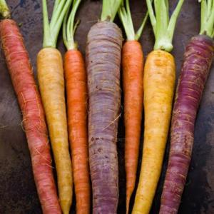 Choose heirloom carrots for different colours than just plain orange.